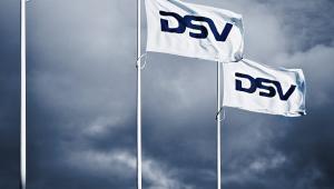 DSV - Flag