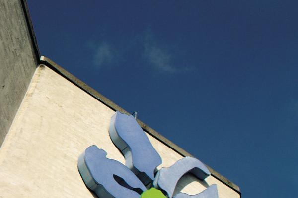 Topdanmark - Blomst på mur