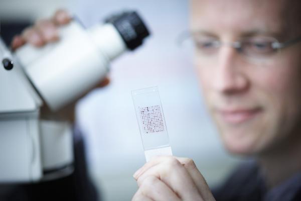 Genmab - Lab-scientist